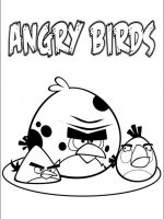 Angry Birds 03