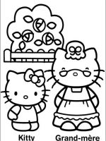 Hello Kitty 30
